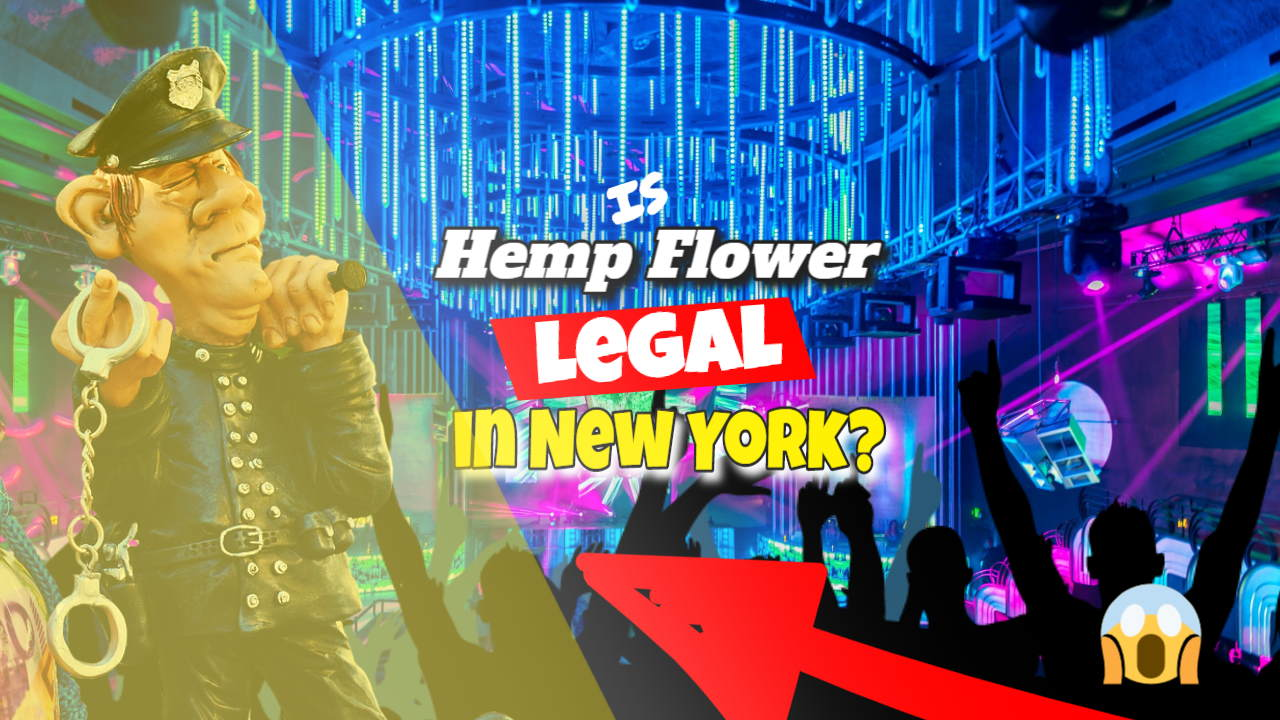 "Featured image bearing the text: ""Is Hemp Flower Legal in NY""."