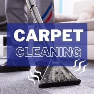 Cleaning carpets by Steam Carpet Cleaning For Allergy Prevention