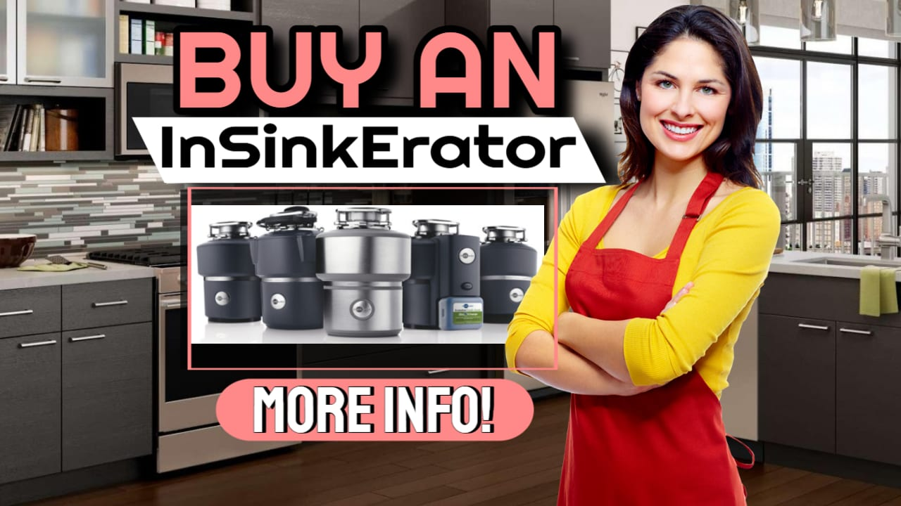 Buy An InSinkErator Disposal To Reduce Kitchen Waste!