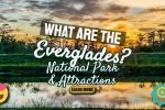 What are the Everglades? The National Park and Attractions