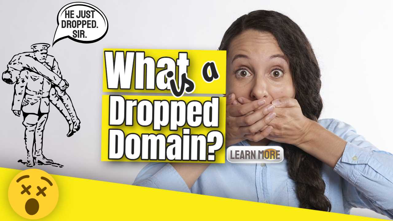 What is a Dropped Domain? Expired Domain Questions Explained